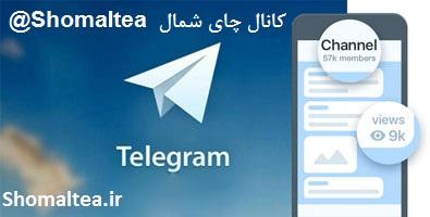 کانال چای شمال | کانال تلگرام چایی ایرانی | کانال چای سنتی ایرانی | کانال تلگرام اصالت و فرهنگ | چای شمال