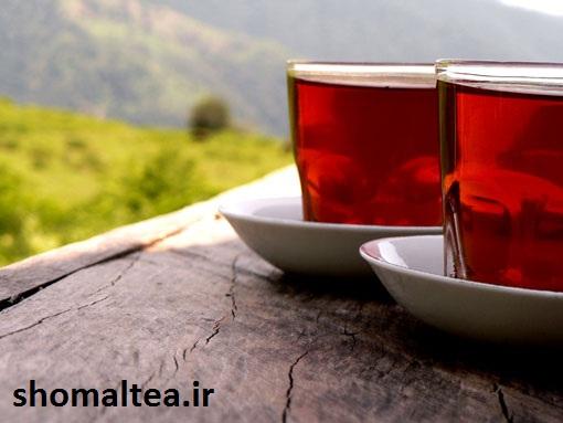 درباره چای ایرانی | آشنایی با چای داخلی | میزان مصرف چای در کشور | چرا چای ایرانی | چای شمال | چای بدون اسانس